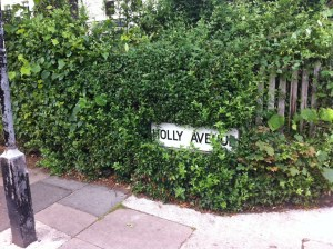 Holly Avenue where Kate Daniels lives