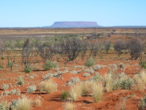 The Australian outback - an unusual and quirky setting for a funny romantic story image courtesy of Wikipedia