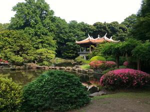 Shinjuku garden in Tokyo - Pic from Fran Pickering
