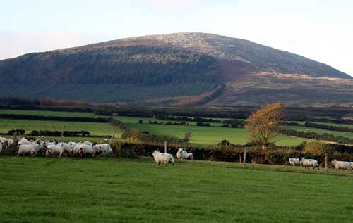 Black Rock Mountain County Wexford - Wikipedia (c) Sarah777