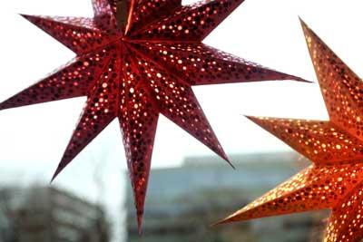 Christmas stars -(c) Miriam Preis/imagebank.sweden.se